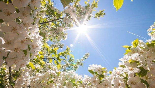 17 мая: народный календарь и астровестник