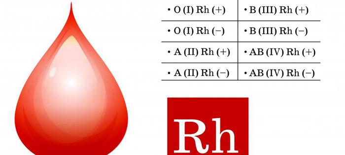 группа крови группа фото