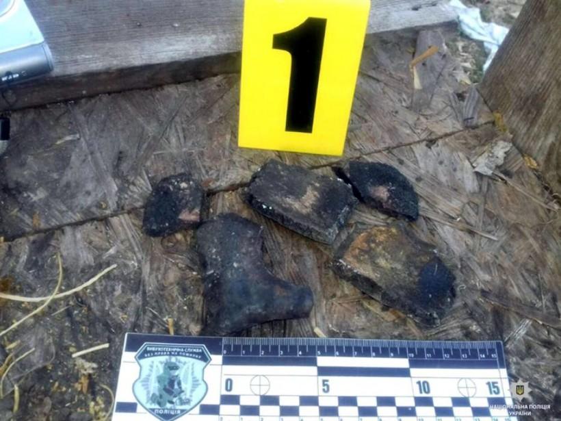 Оторвало пальцы: от взрыва мины времен ВМВ пострадал житель Харьковской области (ФОТО)