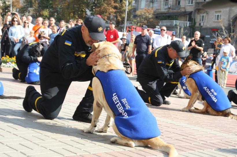 В ГСЧС учредили традицию торжественно отмечать служебных собак за спасение людей