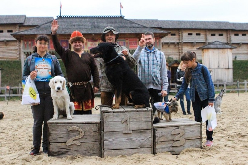 Под Киевом в «Парке Киевская Русь» пройдет фестиваль собак «Лохматые лапки» (ФОТО)