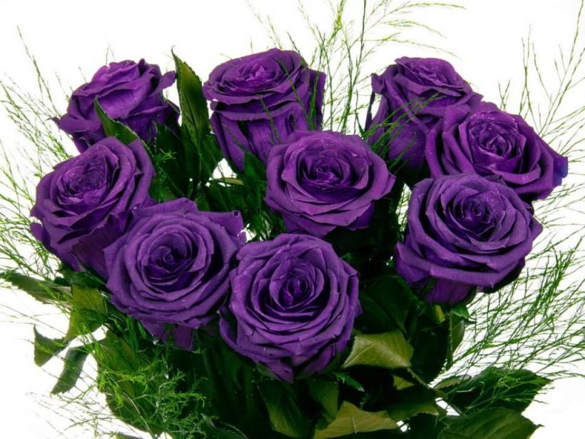 Мама тернопольского школьника купила  учительнице букет из фиолетовых роз за 800 гривен