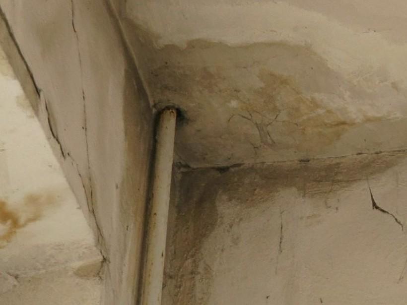 В николаевской школе с потолка полилась вода: отремонтированная крыша дала течь (ФОТО)