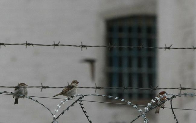 В Таджикистане при подавлении тюремного бунта погибли 13 заключенных