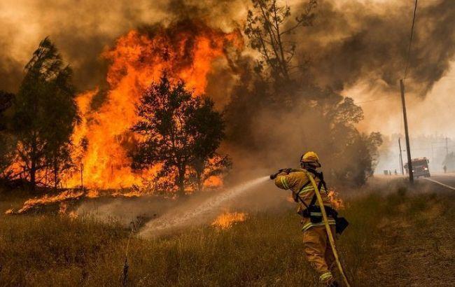 В Калифорнии из-за лесного пожара эвакуируют людей