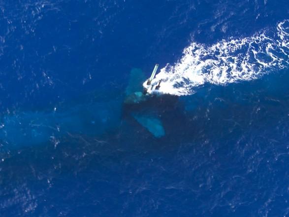 Три подводные лодки могут изменить ситуацию в Черноморском бассейне - Винник