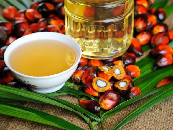 Украина введет запрет на пальмовое масло - нардеп