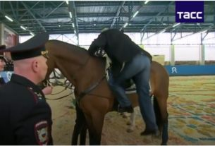 Путин и лошадь