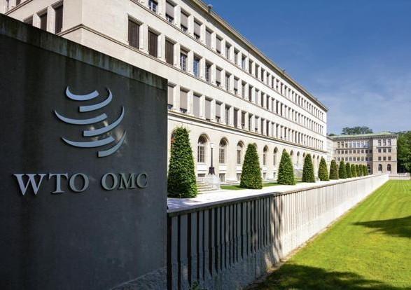 В Минэкономразвития посоветовали ВТО не оспаривать дело в отношении транзитных ограничений РФ
