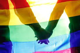 В ООН призывают украинскую власть способствовать толерантности к ЛГБТ