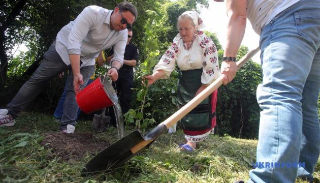 Общественные работы вместо заключения - в Пирогово провели масштабную толоку