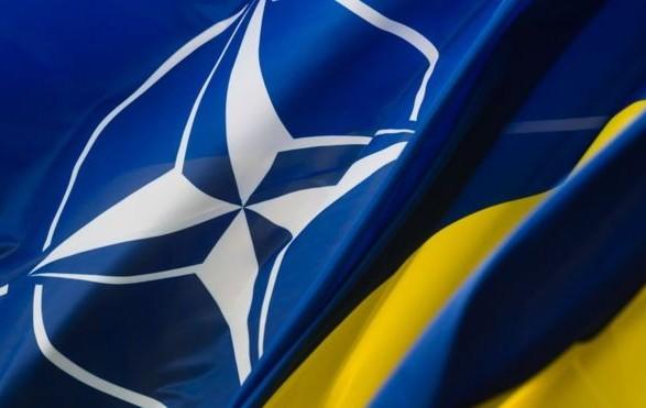 Более 50% украинцев поддерживают вступление в НАТО — опрос