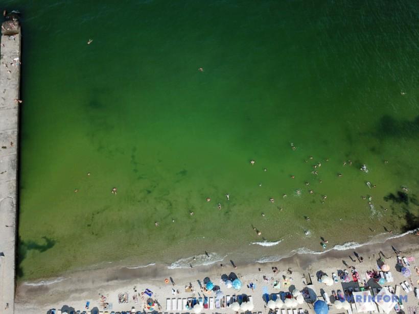 Зеленое море, два года безвиза и пожар в психбольнице