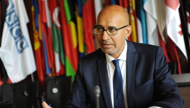 Представитель ОБСЕ по свободе СМИ прокомментировал законопроект о дезинформации