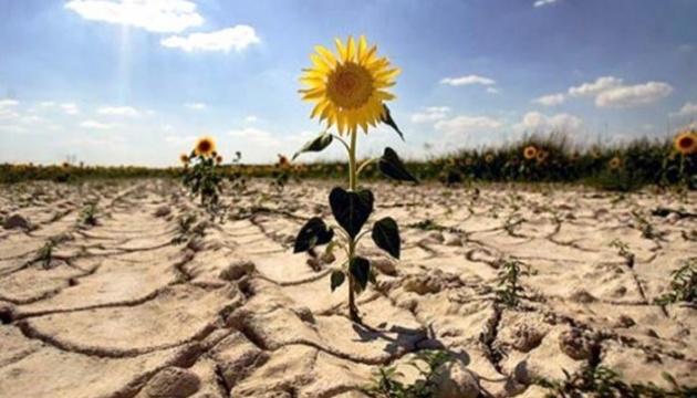 Климатологи пугают: засуха 2020-го – это закономерность, конца которой не видно