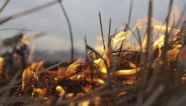 Депутаты ужесточили ответственность за поджог травы — до 36 тысяч штрафа