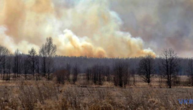 Пожары в экосистемах: в Кабмине хотят усилить наказание для поджигателей