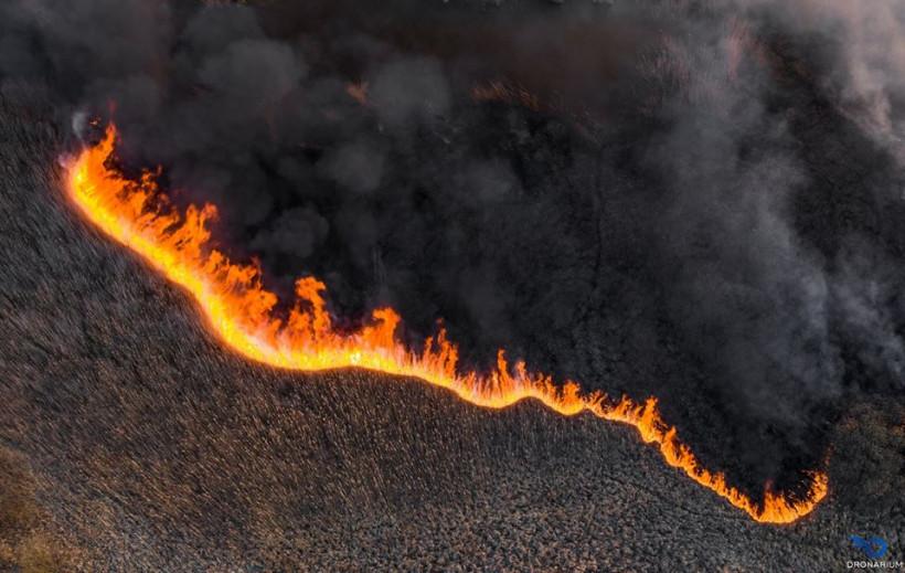 Пожар в чернобыльской зоне – крупнейший со времен аварии в 1986-м