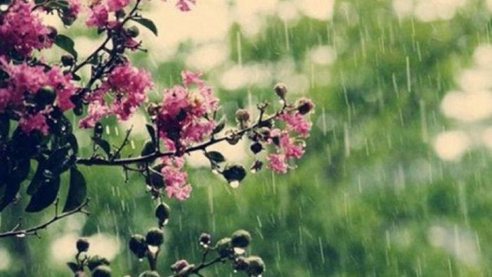 Прогноз погоды на 12 мая 2020.