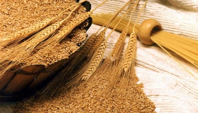 """У """"мышей"""" есть имена: полиция открыла дело из-за хищения зерна в Госрезерве"""