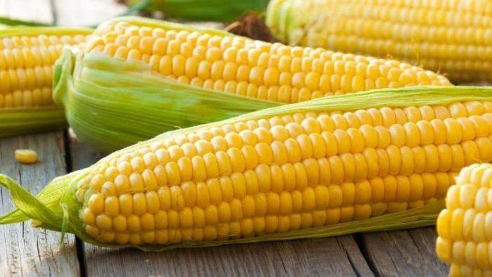 Польза и вред кукурузы.