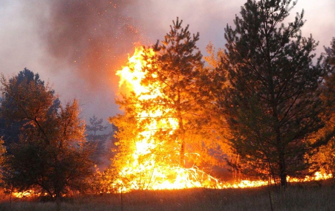 Пожары в Харьковской области