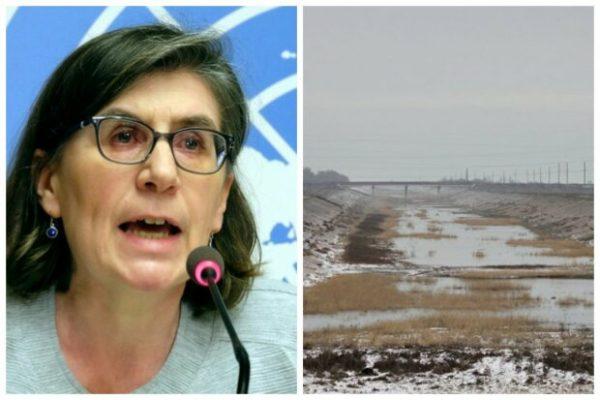 Представитель ООН по правам человека Элизабет Троссел.