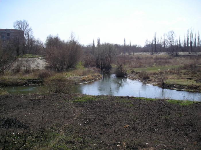 река Ольховая
