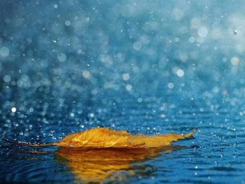 Прогноз погоды на выходные 17-18 октября.