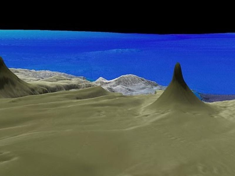 Коралловый гигант