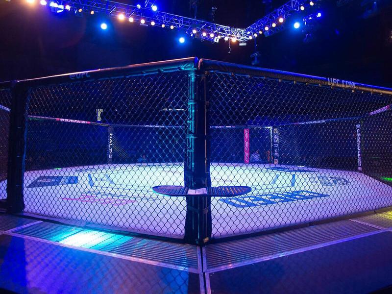 UFC клетка