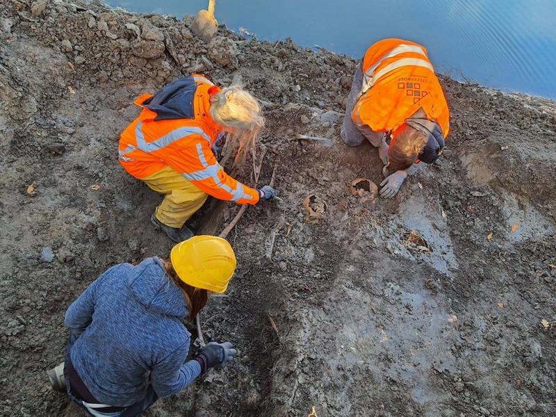 Раскопки при Бейтштейн