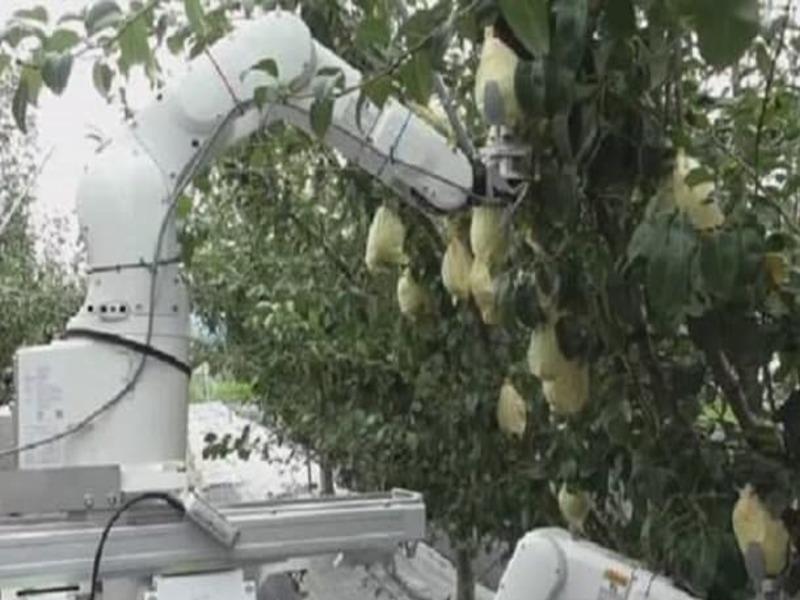 Робот сборщик