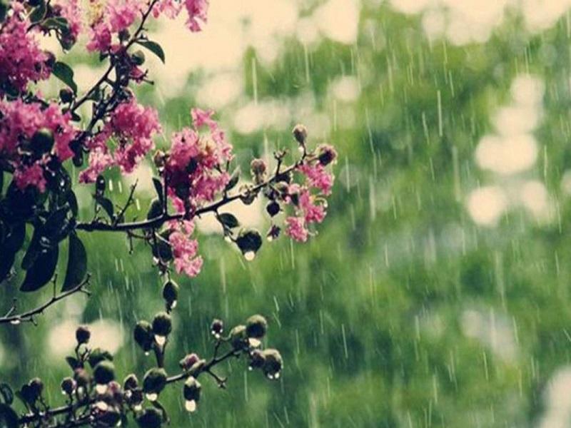 Прогноз погоды на 8 мая 2021.