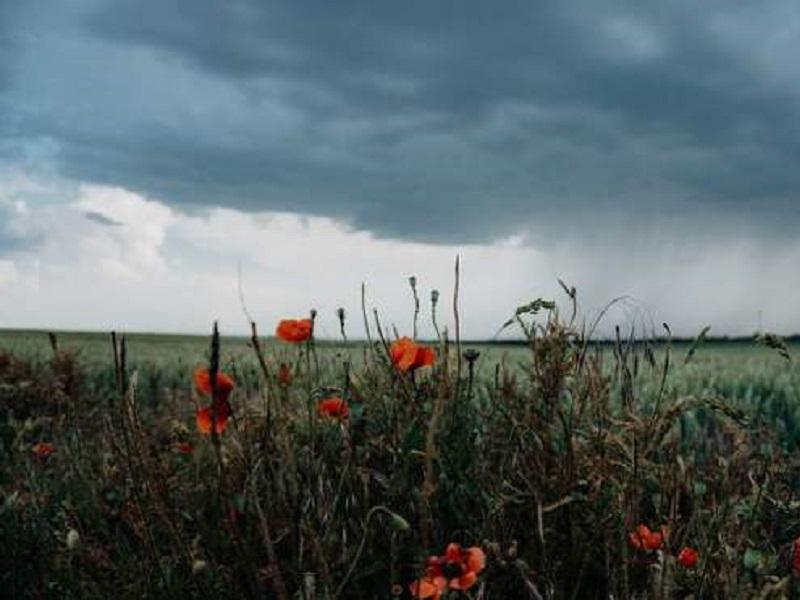 Прогноз погоды на 15 мая 2021.