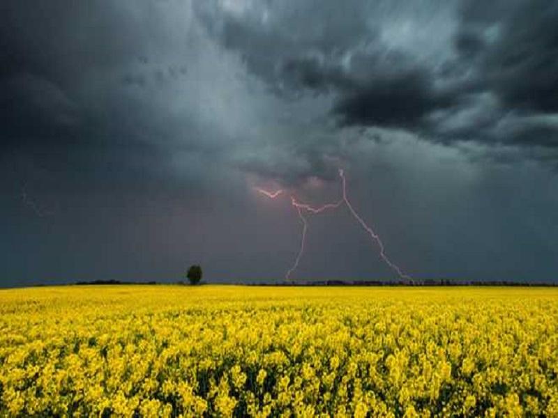 Прогноз погоды на 2 июля 2021,