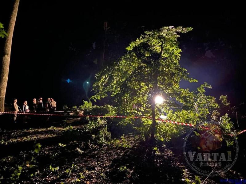 Во Львове из-за непогоды погибло двое людей