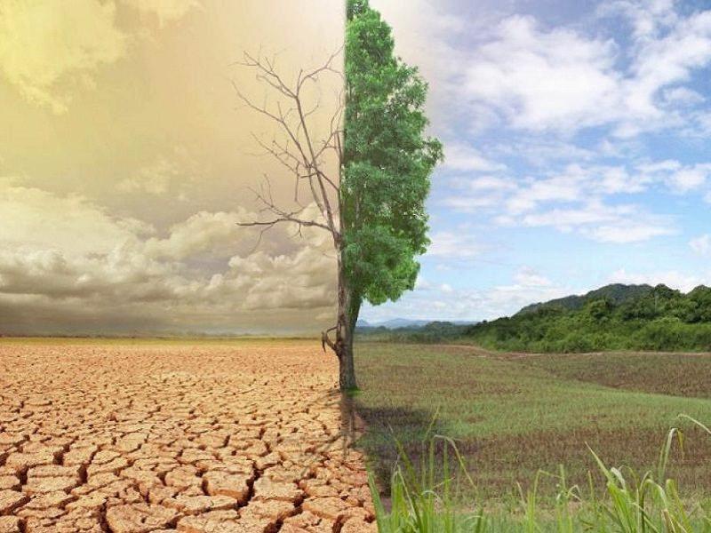 изменения климата в Украине