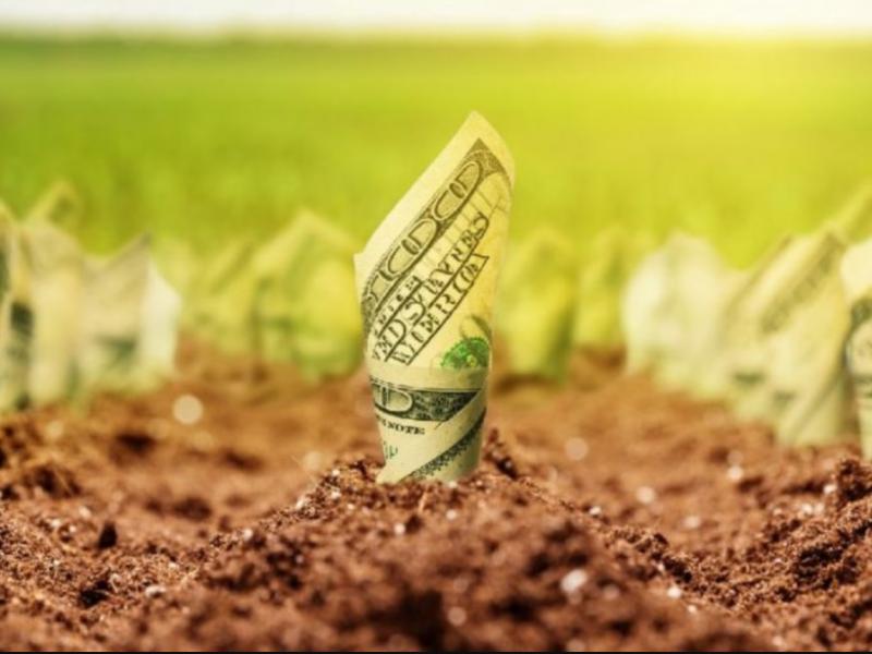 Земля и деньги