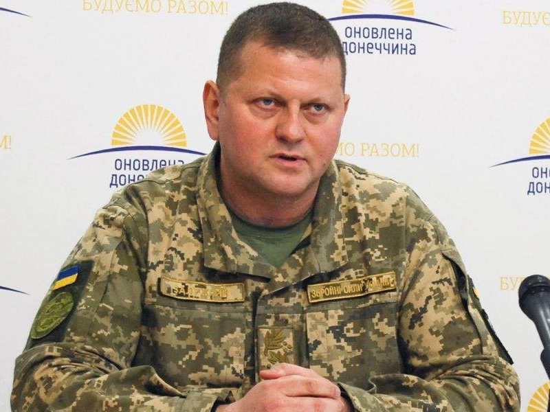 Валерий Залужный