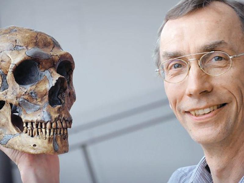 Неандерталец, живший 50 тысяч лет назад