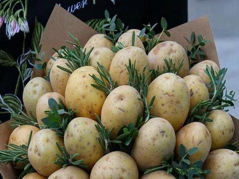 В Донецке уже готовы квартиры менять на картофель.
