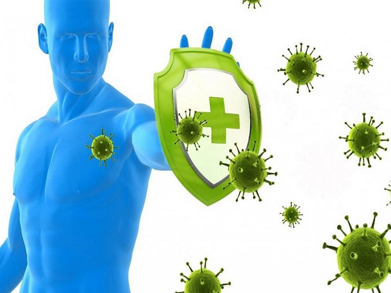 Как долго сохраняется иммунитет у переболевших коронавирусом.