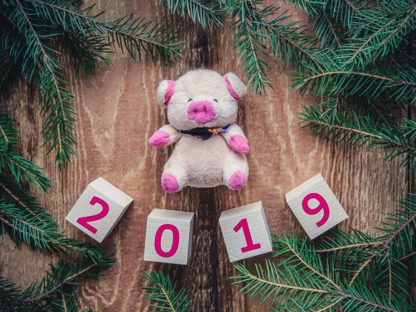 Е. Осипенко: «Первые пять месяцев года Свиньи могут быть достаточно напряженными»